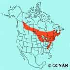 Canada Warbler range