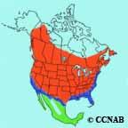 Common Yellowthroat range
