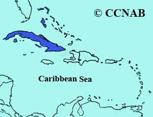 Cuban Gnatcatcher range