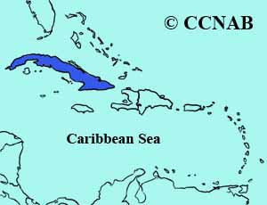 Cuban Parrot range map