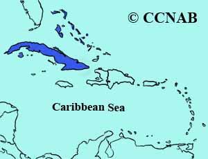 Cuban Pewee range
